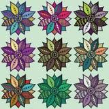 Colores de lujo de la flor Foto de archivo libre de regalías