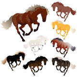 Colores del caballo de la colección del vector Fotos de archivo