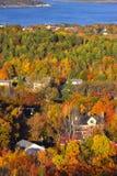 Colores del follaje de caída Imagen de archivo libre de regalías