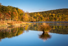Colores del follaje de otoño reflejados en el lago mine de plata Imágenes de archivo libres de regalías