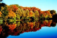 Colores del otoño Imagen de archivo libre de regalías