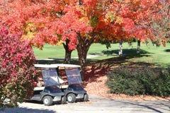Colores del otoño Foto de archivo
