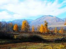 Colores del otoño de las montañas del altai en Xinjiang Foto de archivo libre de regalías