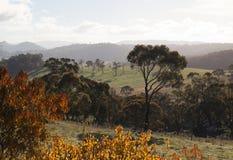 Colores del otoño del campo. Oberon. NSW. Australia Fotos de archivo