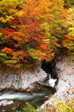 Colores del otoño del valle Fotos de archivo