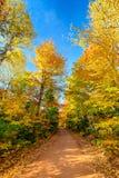Colores del otoño en Canadá Fotografía de archivo libre de regalías