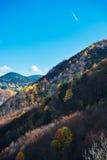 Colores del otoño en el bosque Fotos de archivo