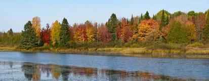 Colores del otoño en el lago Imagenes de archivo