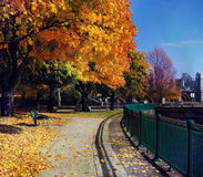 Colores del otoño en el mecanismo impulsor conmemorativo, Cambridge, mA Foto de archivo