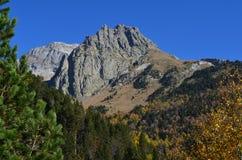 Colores del otoño en los bosques mezclados del parque natural de Posets-Maladeta, español los Pirineos Imagen de archivo libre de regalías