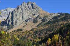 Colores del otoño en los bosques mezclados del parque natural de Posets-Maladeta, español los Pirineos Imagenes de archivo