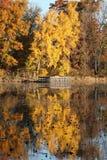 Colores del otoño en Minnesota imágenes de archivo libres de regalías