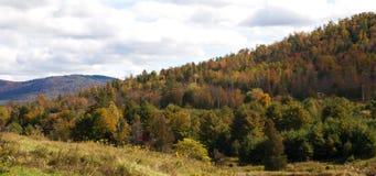 Colores del otoño en una cuesta fotos de archivo libres de regalías