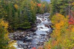 Colores del otoño - la caída se va en el Adirondacks, Nueva York imagen de archivo libre de regalías