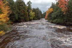 Colores del otoño a lo largo de los rápidos del río de la isla de Presque en Michigan fotos de archivo
