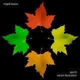 Colores 9 del otoño Fotos de archivo libres de regalías