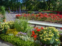 Colores del verano Imagenes de archivo