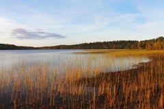 Colores del verano indio y del otoño en un lago en Finlandia Imagenes de archivo