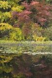 Colores en negrilla Foto de archivo libre de regalías