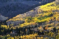 Colores escénicos de la caída Fotos de archivo