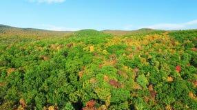Colores hermosos del follaje de Nueva Inglaterra Vista de pájaro aérea imagen de archivo
