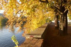 Colores hermosos del otoño Foto de archivo libre de regalías