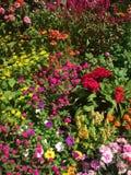 Colores mágicos Foto de archivo