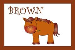 Colores: marrón Imagen de archivo