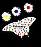Colores primarios Fotografía de archivo libre de regalías