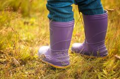 Colores rain boot, autumn enviroment. Violet colores rain boots in the forest, autumn enviroment Stock Photos