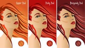 Colores rojos de la carta del pelo imagenes de archivo
