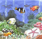 Colores tropicales del mar Ilustración del Vector