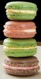 Colores unidos del macaron Fotografía de archivo libre de regalías