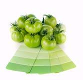 Colores verdes de la pintura que corresponden con a la naturaleza Fotos de archivo