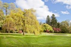 Colores vibrantes del parque. Imagen de archivo