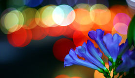 Colores y bokeh Foto de archivo libre de regalías