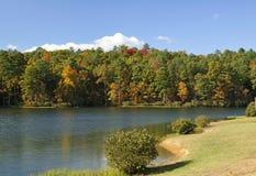 colorez l'automne Image stock