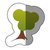 colorez l'icône créative d'arbre d'autocollant Photographie stock libre de droits