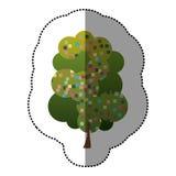 colorez la belle icône d'arbre d'autocollant Photographie stock libre de droits