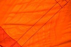 Colorez la texture orange de tissu utilisée comme fond Photos stock