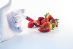 Colorez le fruit génétique Images stock