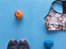 Colorez les sports complètent, les chaussures bleues de sports sur le fond bleu, haltère Images libres de droits