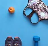 Colorez les sports complètent, les chaussures bleues de sports sur le fond bleu, haltère Image stock