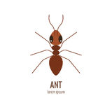 Colorfu cartoon ant logo Stock Photos