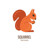 Colorfu cartoon squirrel logo Royalty Free Stock Image