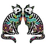 Colorfu katter Arkivbilder