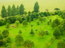 Colorfu lphotography of garden and fields. Color photography of gardens and fields from top view Royalty Free Stock Image