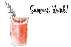 Colorfu pociągany ręcznie ilustracja wyśmienicie smoothie świeża owoc Świeży lato koktajl z grapefruitowym i rozmarynowym Szkieł  Obrazy Stock