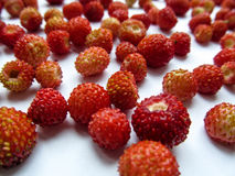 Colorful abstract background - beautiful red juicy wild strawberry berries. Isolated ripe berries close-up scattered chaotically on a white surface Stock Images