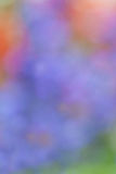 Colorful abstract background. Blur and beautiful colorful abstract background Stock Images